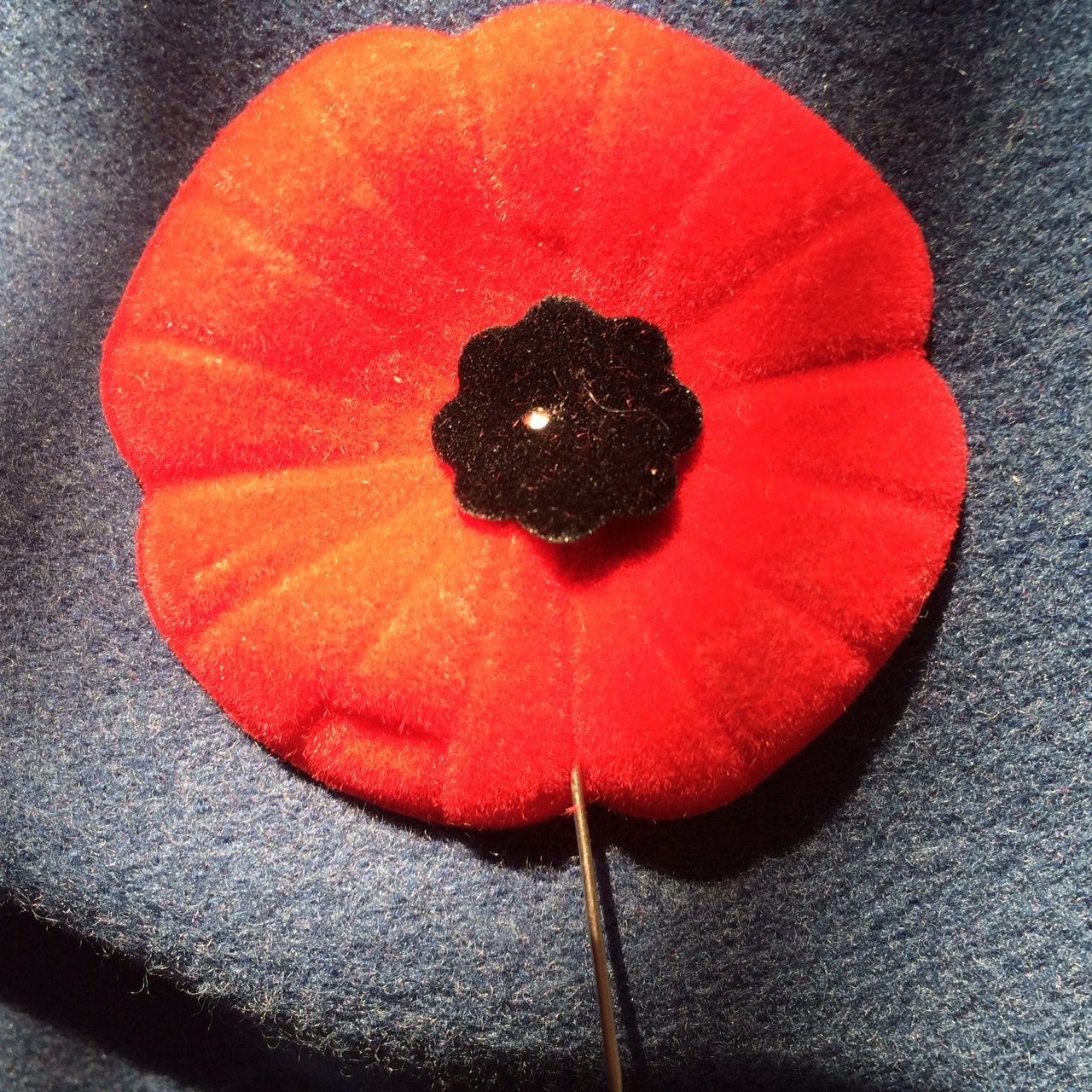Take Time To Honour The Canadian Forces This Remembrance