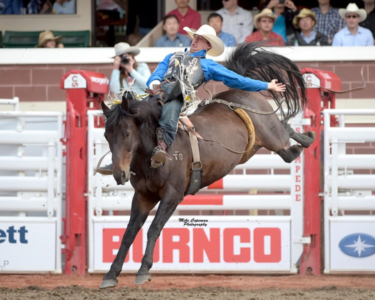 Get Ready For The 2017 Calgary Stampede Rodeo Blog