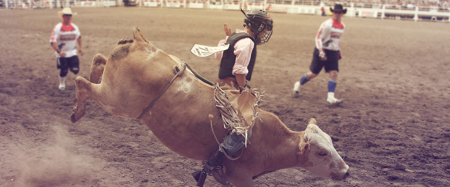 Junior Steer Riding Rodeo Calgary Stampede