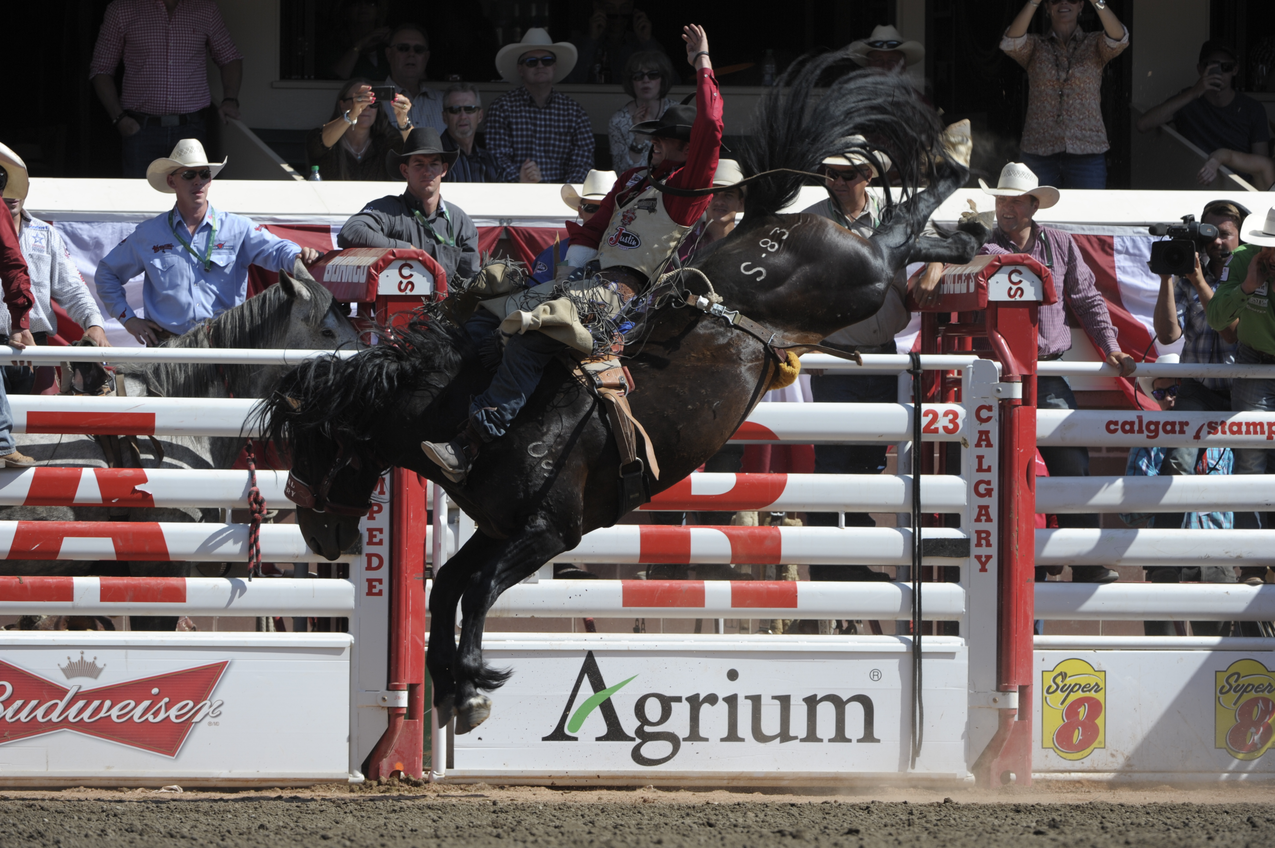 Trail Dust And Accolades At Fall Rodeos Blog
