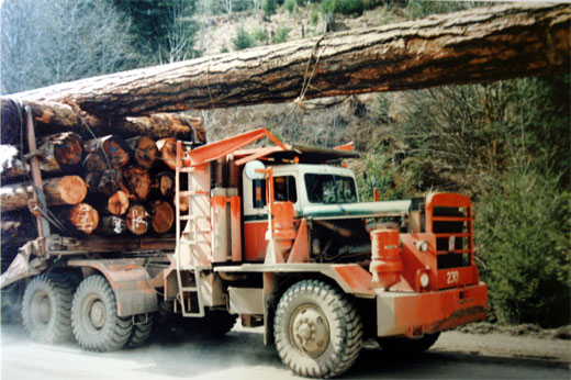 "Logging truck carrying the Douglas Fir tree to Calgary. Photo Courtesy of the ""From Camp to Community"" Virtual Museum, BC Forest Discovery Centre."