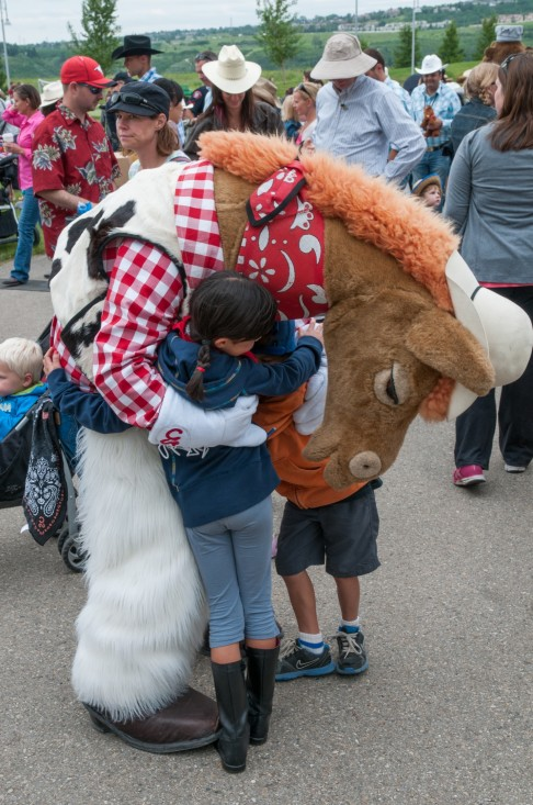 harry the horse hugging a guest'