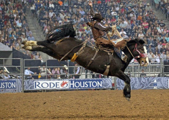 Stampede Warrior competing at Rodeo Houston in 2014