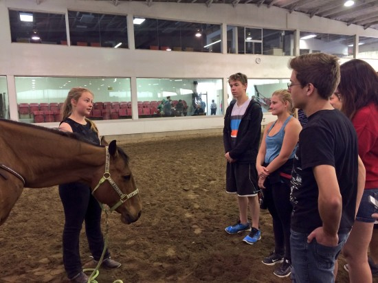 Showrider Hannah Braun, 15 years old, and her horse Tokahee teach a group of Showband members about performing around horses.