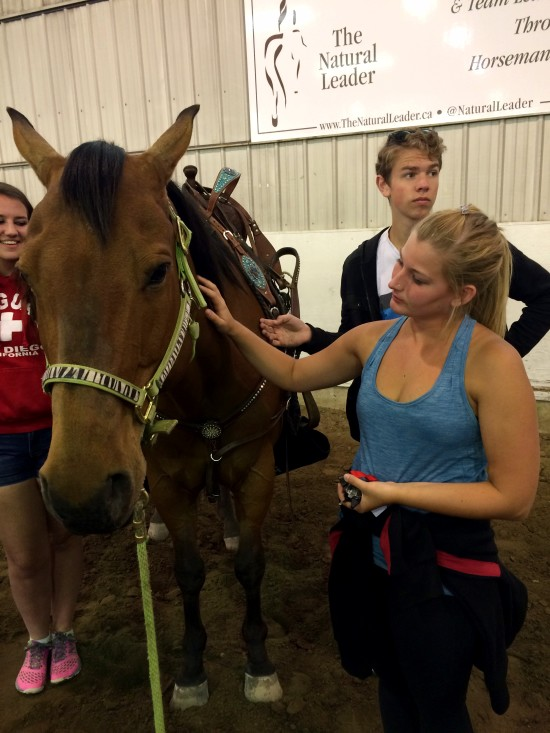 Showband member Cassie Groves got to bond with Tohakee, petting the horse from the side so as not to startle the horse.