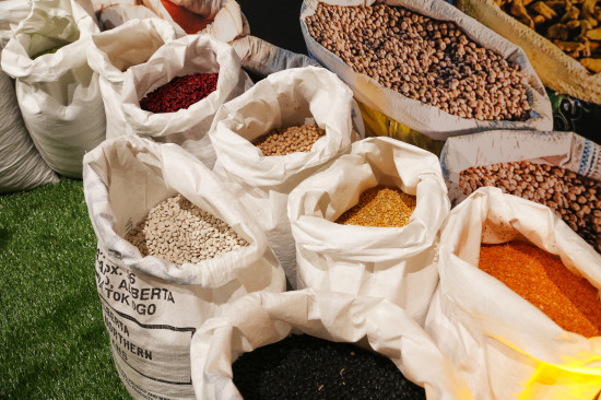 Bags of pulse crops such as lentils and chickpeas. Photo courtesy Alberta Pulse Growers.