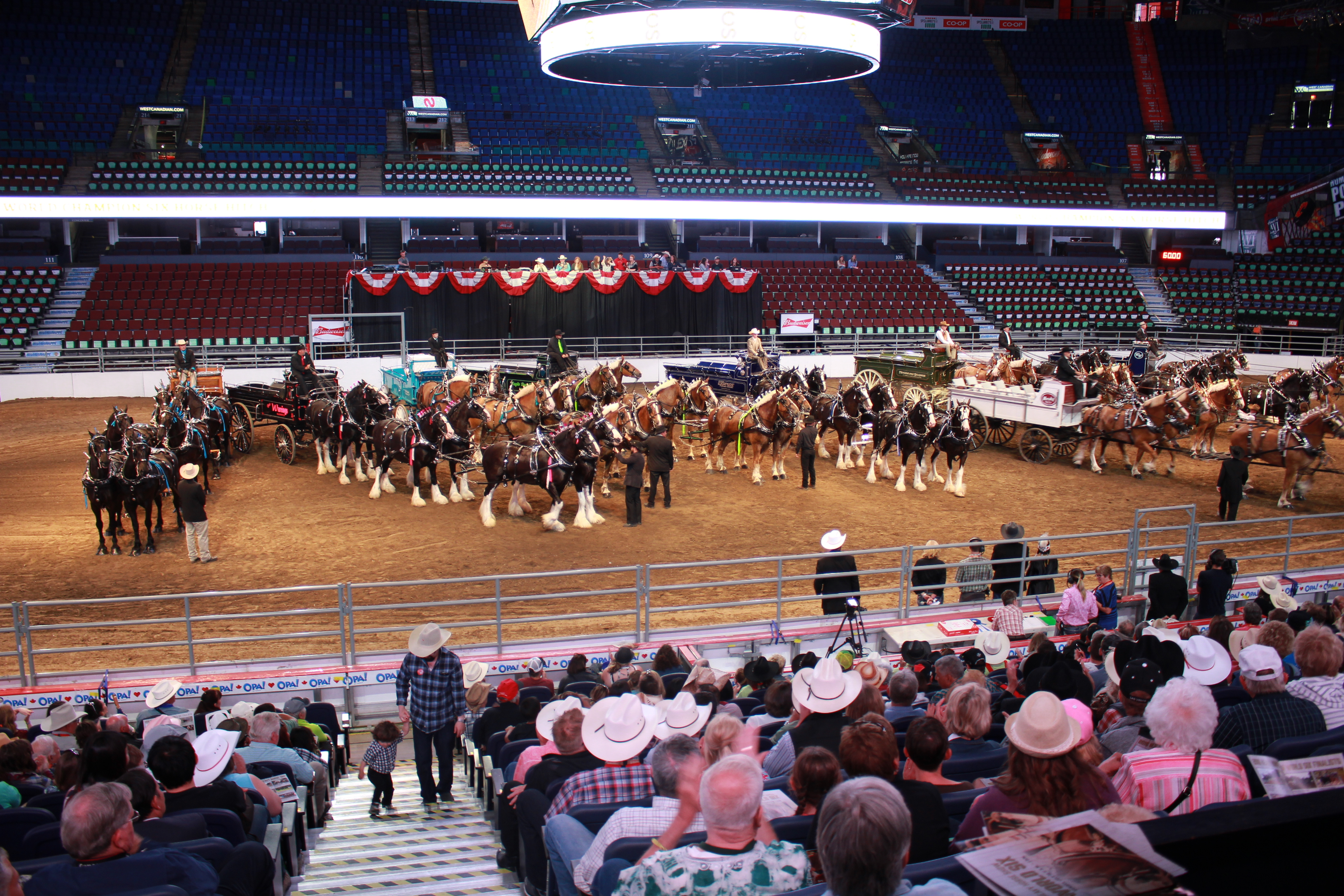 A Wet And Great Stampede Blog