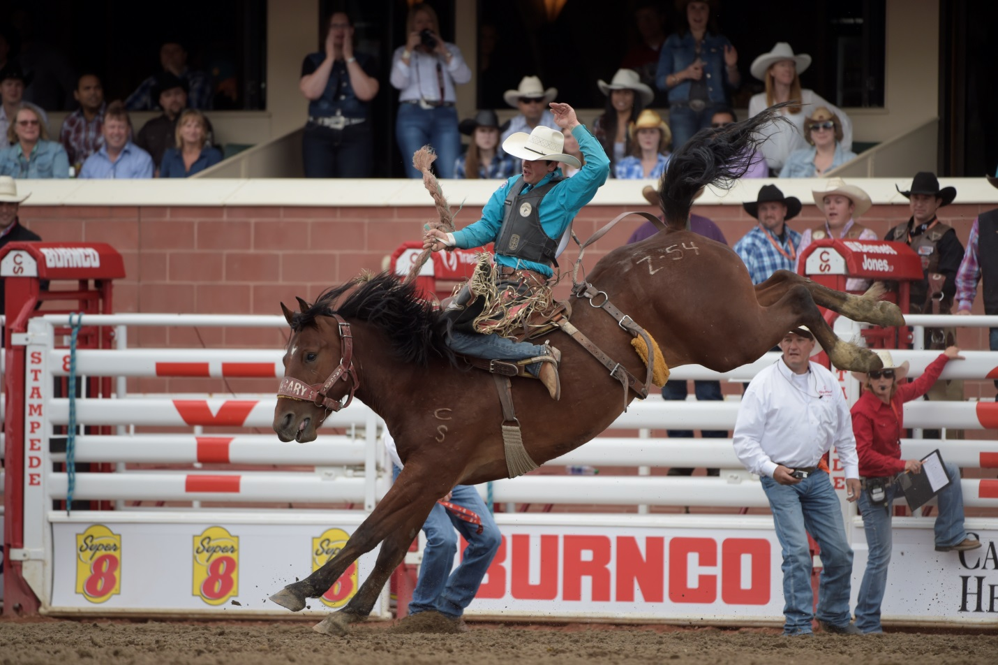 Calgary Stampede Novice Tour Names 2016 Champions Blog