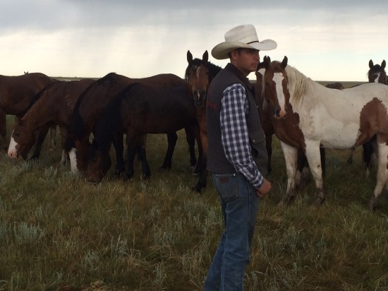Tyler Kraft with some of the horses at the Stampede Ranch