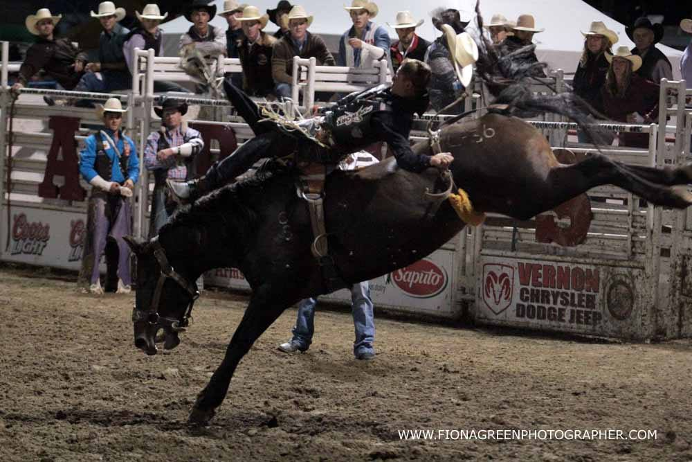Top Rodeo Competitors Earn Invitations To The 2017 Calgary