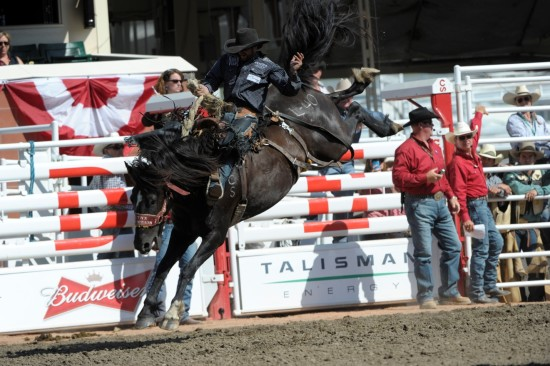 Lynx Mountain with Wade Sundell at the 2014 Calgary Stampede