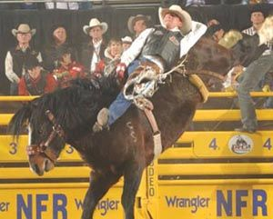 Grated Coconut competes at the 2009 NFR (photo courtesy PRCA)