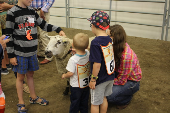 August - 4-H Rodeo