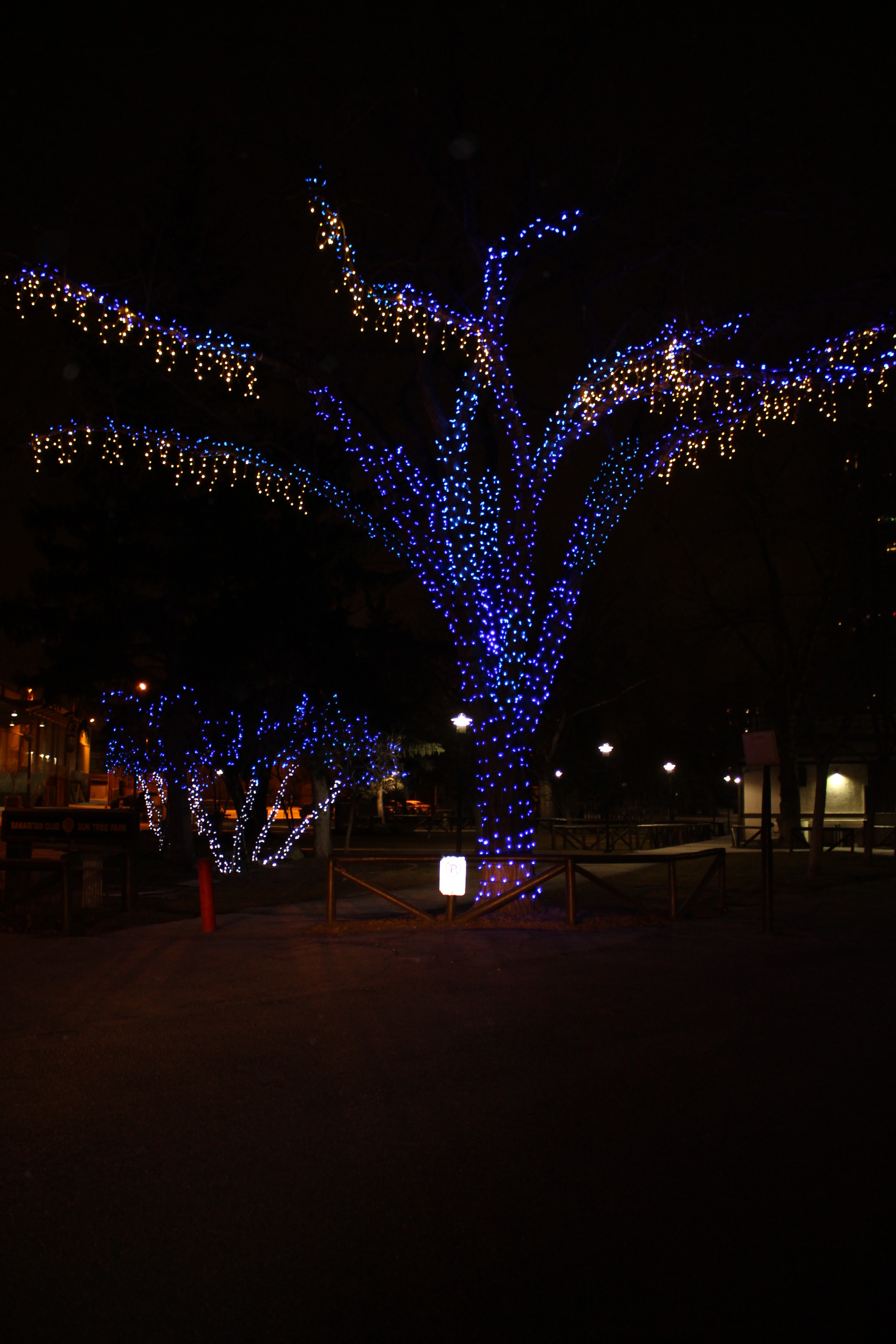 With 77,000 Christmas Lights and 500 hours of work, Stampede Park ...