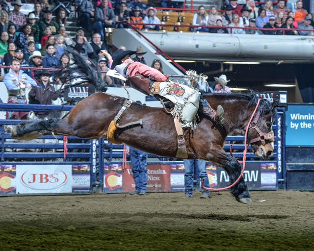 Some Of The Most Notable Calgary Stampede Highlights From