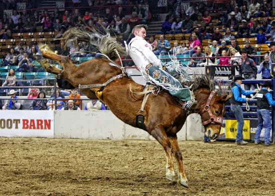 Tootsie Roll and Richmond Champion earn 85 points in Denver