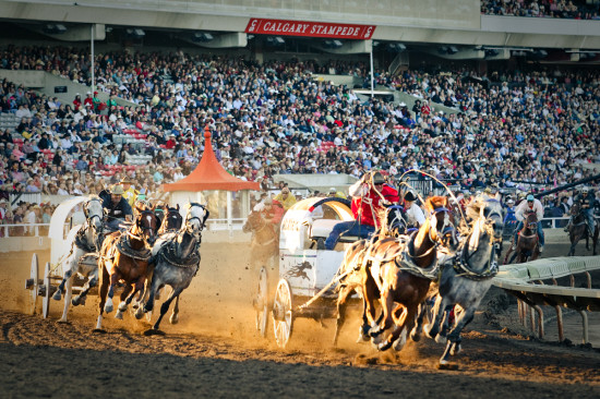 Feel the thunder of hooves and the excitement of the crowd as a wagon carrying your logo races around the track.