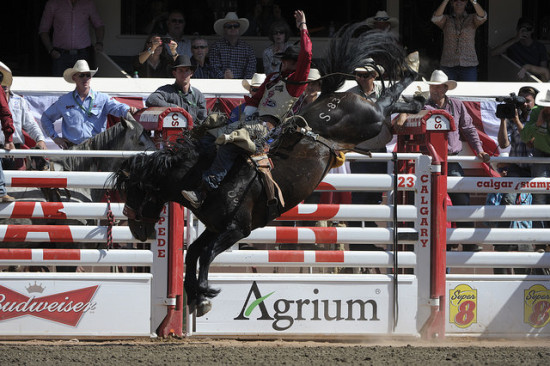 Special Delivery at the Calgary Stampede