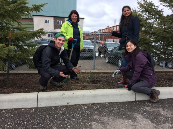 Four part-time horticulturalists from Benevity share a smile with a baby Colorado blue spruce