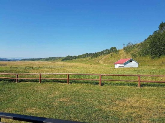 Family Fun And Ranch Tours For Historic Calgary Week Blog
