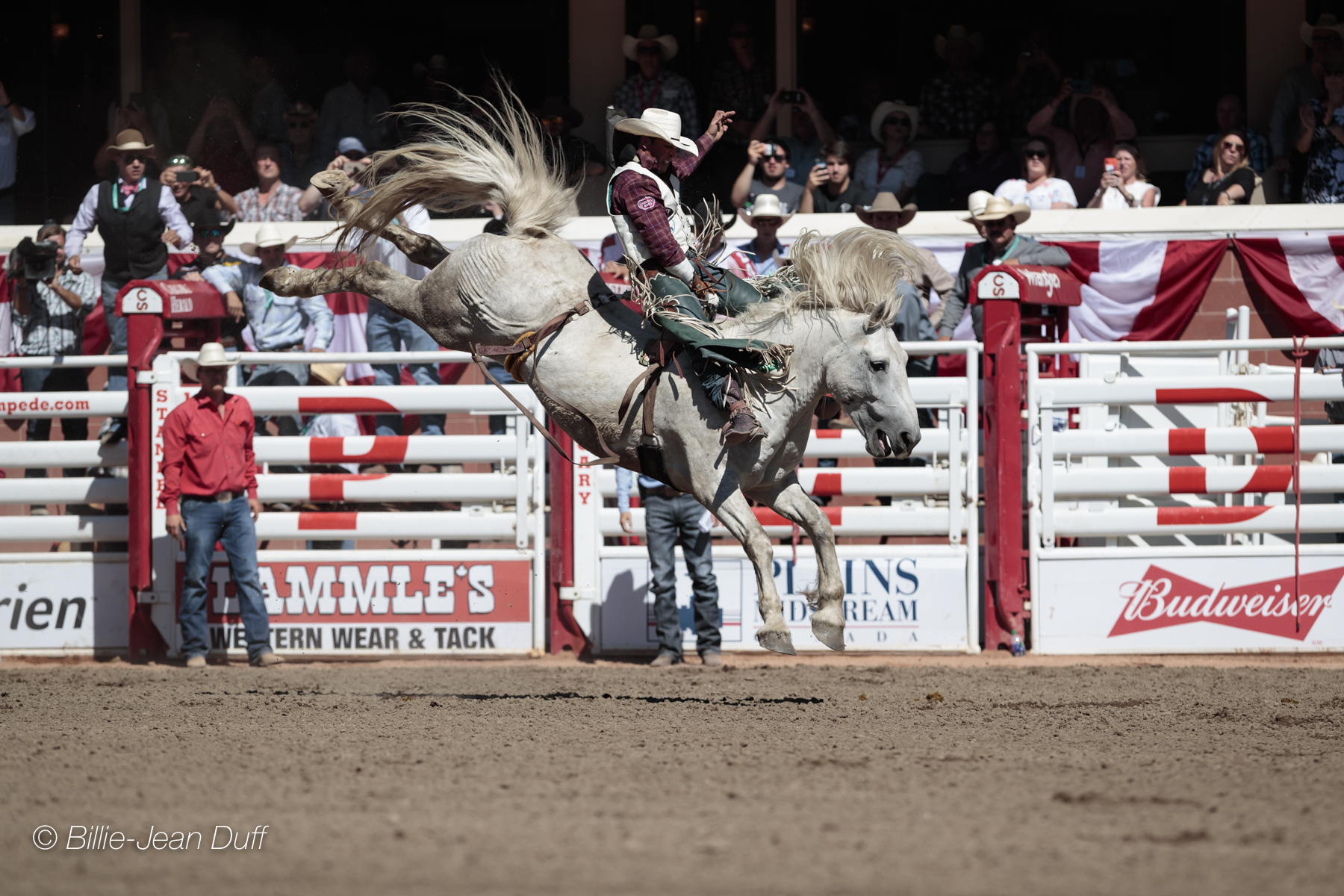 Showdown Sunday At The Calgary Stampede Lived Up To Every