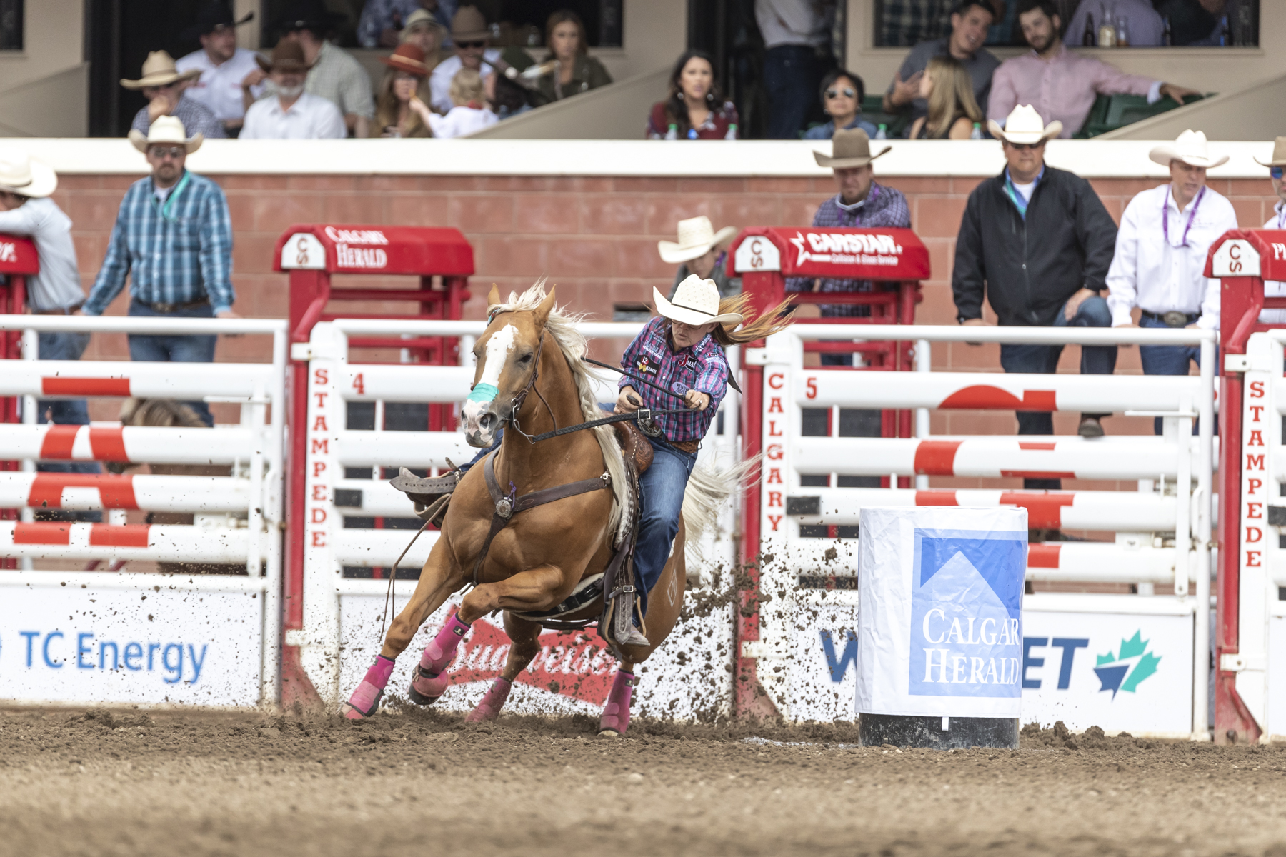 Chase Ing A Dream Despite All Odds Or Outlaw Bull