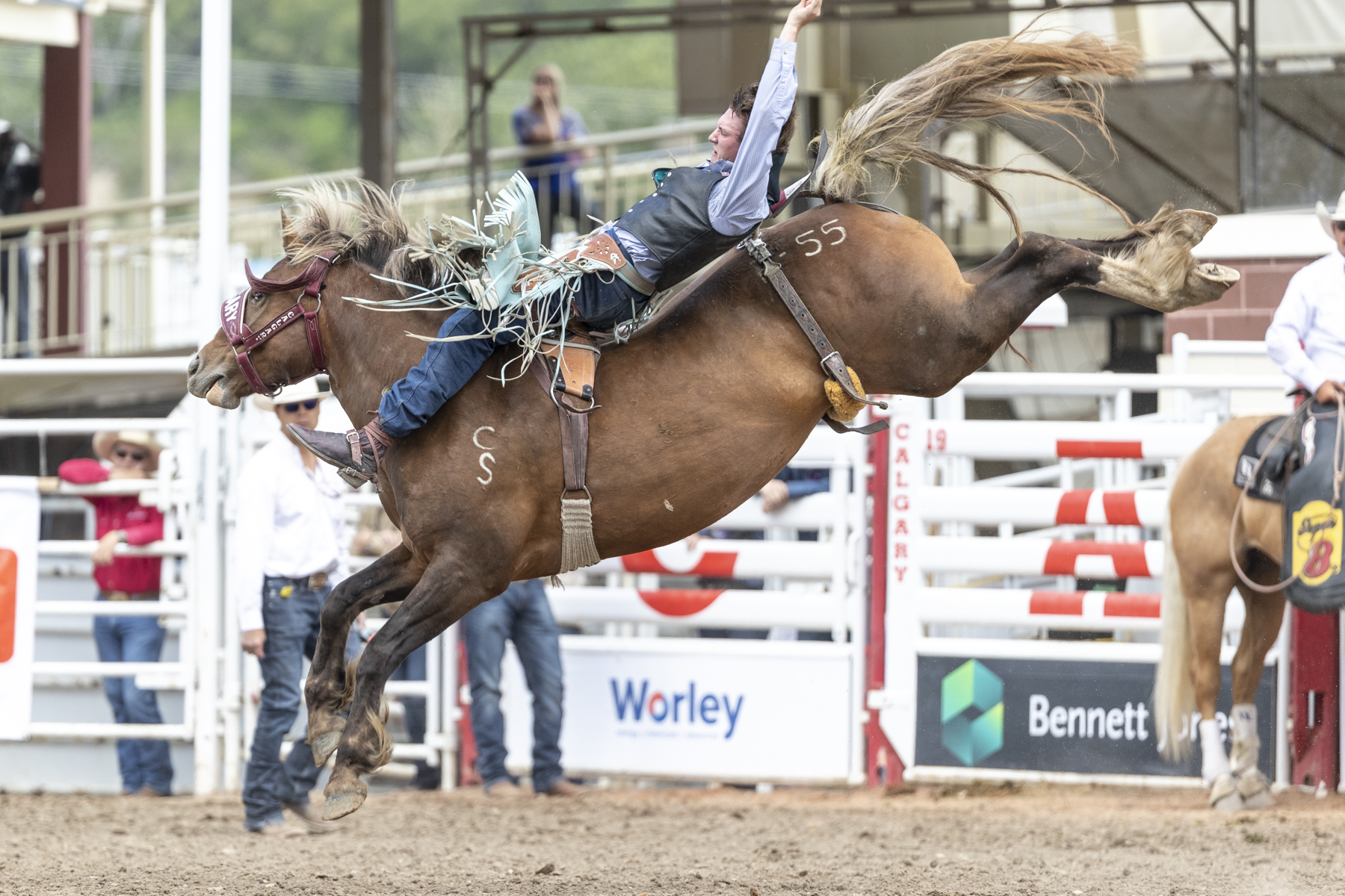 The Rich Got Richer On Day 7 Of The Calgary Stampede Blog