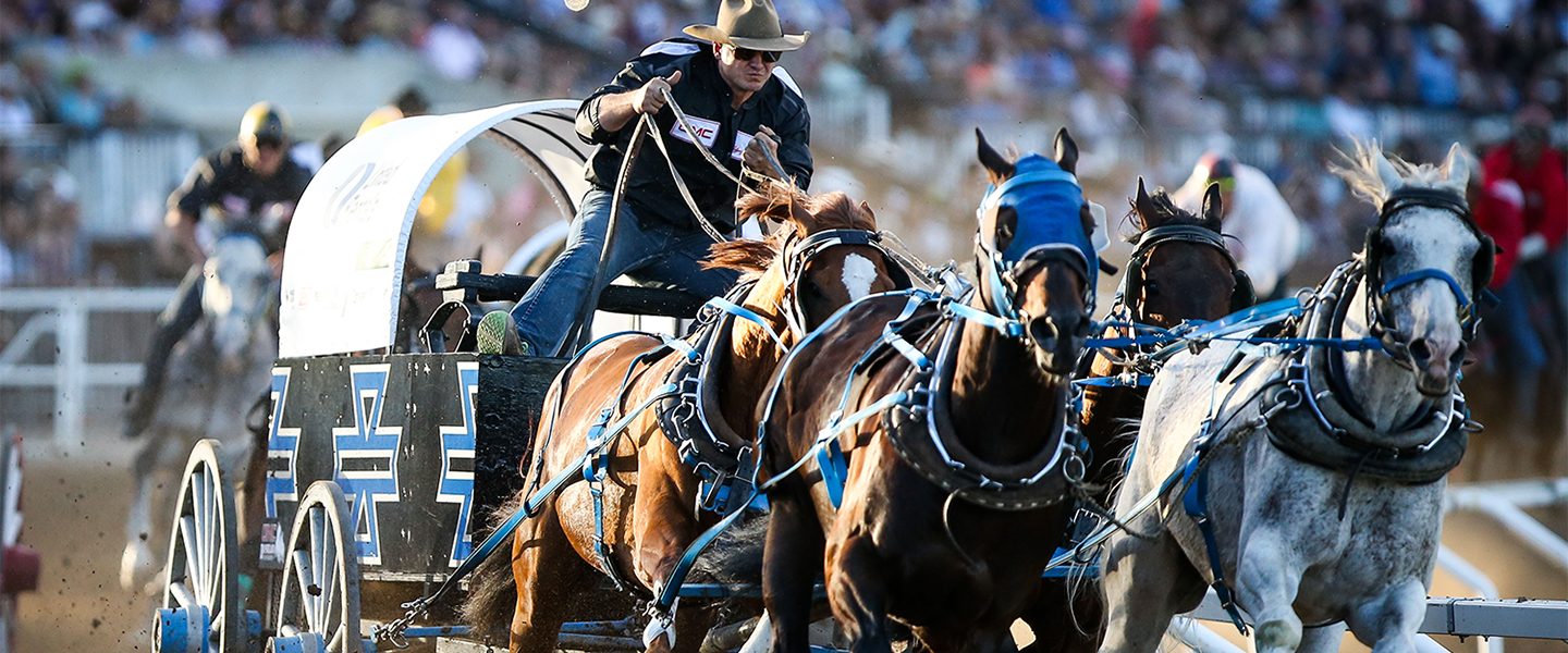 Cbc Calgary Stampede Broadcasts Calgary Stampede