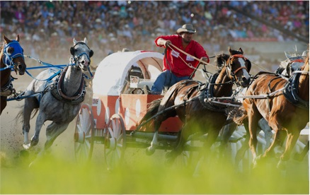 Calgary Stampede The Greatest Outdoor Show On Earth