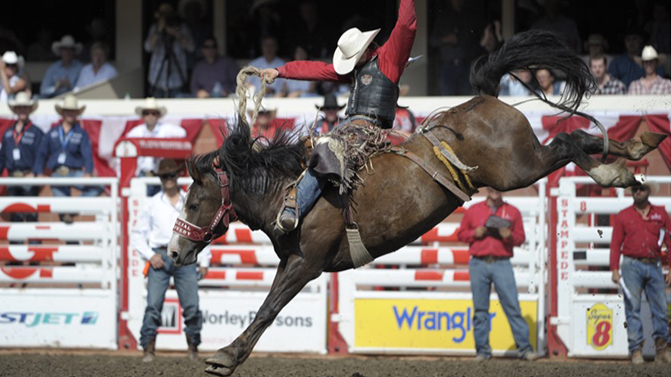 Admission Rodeo And Show Tickets Calgary Stampede