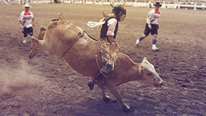 JUNIOR STEER RIDING